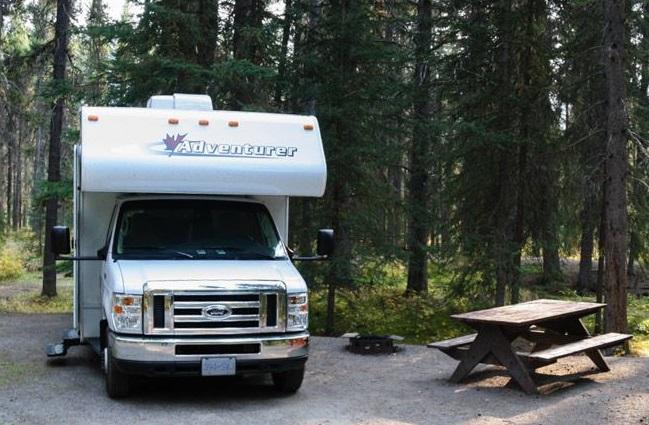 Auf einem Campingplatz im Wald1